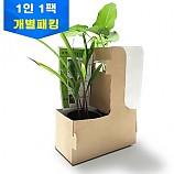 콩과 옥수수 성장비교실험/1인용/학습꾸러미